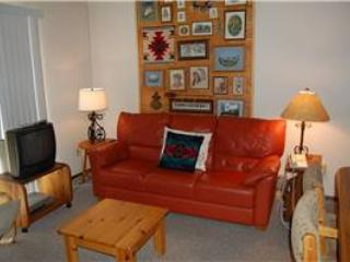 Meadow Ridge Court 1 Unit 3 - Winter Park vacation rentals