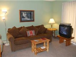 Meadow Ridge Court 2 Unit 4 - Winter Park vacation rentals