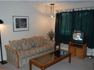 Hi Country Haus Unit 1421 - Winter Park vacation rentals