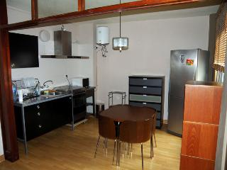Bright 1 bedroom Santa Cruz de Tenerife Condo with Elevator Access - Santa Cruz de Tenerife vacation rentals