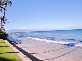 226 - Remodeled  2b/2b Oceanview - Lahaina vacation rentals