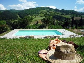 Villa Torrini Villa to rent in Emilia Romagna - Faenza vacation rentals