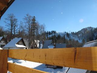 Charming Condo with Internet Access and Mountain Views - Jahorina vacation rentals
