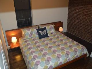 Beautiful Condo with Television and Microwave - Long Island City vacation rentals