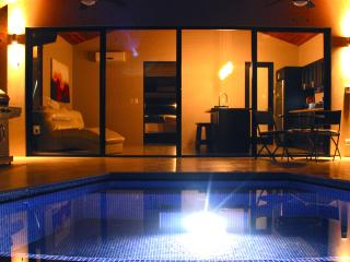 Couples Paradise, Luxury, Private Infinity pool. - Dominical vacation rentals