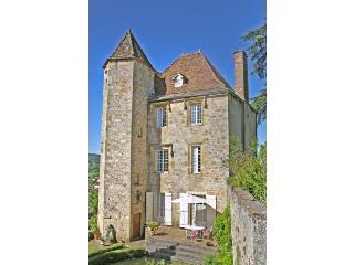 france/midi-pyrenees/chateau-la-vergne - Puy-l Eveque vacation rentals