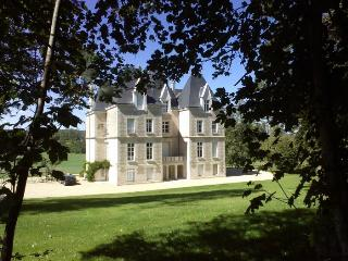 france/vendee-charente/chateau-segalin - Vienne vacation rentals
