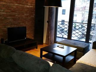 One bedroom Apartment in Centar Of Skopje - Skopje vacation rentals