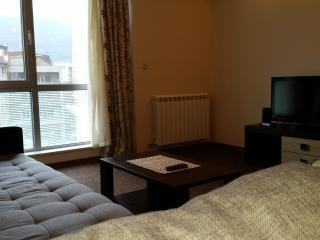 Central one bedroom Apartment-Leninova street - Skopje vacation rentals