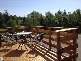2 bedroom Resort with Internet Access in La Bresse - La Bresse vacation rentals