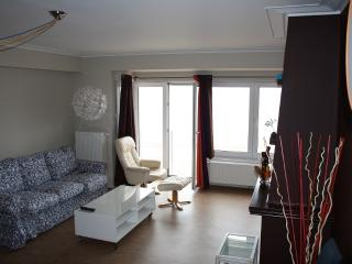 2 bedroom Apartment with Internet Access in Ostende - Ostende vacation rentals