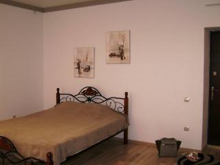 Romantic 1 bedroom Condo in Vitebsk - Vitebsk vacation rentals