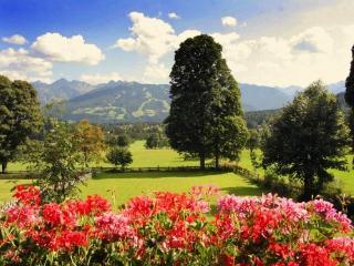 Pension Hoffelner - Apartment Dachstein - Ramsau vacation rentals