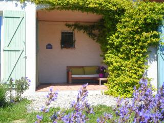 Splendid  villa for 6 people near Carcassonne in Cathar Country - Cailhavel vacation rentals