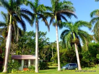 The Fern- 5 minute walk to the beach and free wifi - Boscobel vacation rentals