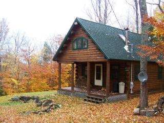 #206 Comfortable log cabin in the woods of Maine - Maine Highlands vacation rentals