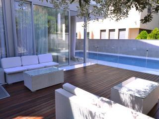 Shahar's Villa - Ramat Hasharon vacation rentals