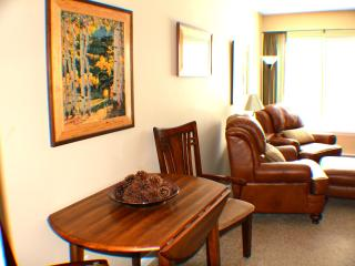 Ski-In Studio - Mountain Views - Downtown Breck - Breckenridge vacation rentals