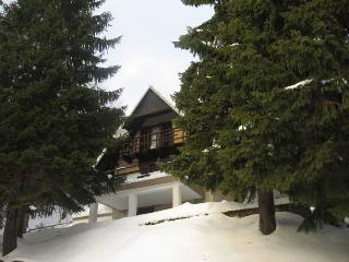 Cozy Ski chalet with Alarm Clock and Long Term Rentals Allowed (over 1 Month) - Lokve vacation rentals