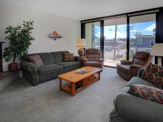 118-9 - Seaside vacation rentals
