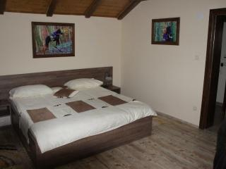 Romantic 1 bedroom Bed and Breakfast in Bjelovar-Bilogora County - Bjelovar-Bilogora County vacation rentals