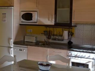 Nice Condo with Internet Access and Short Breaks Allowed - Bisaurri vacation rentals