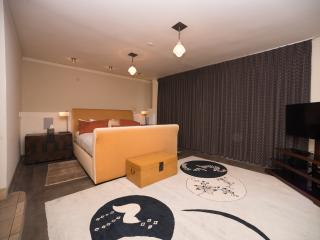 Home of the Year with Downtown Roof Top Patio - Kansas City vacation rentals