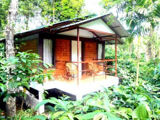 Glendale Holiday Cottages Wayanad - Wayanad vacation rentals