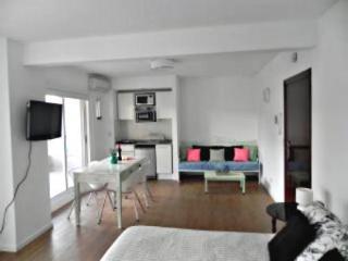Guatemala and Darregueyra II - Buenos Aires vacation rentals