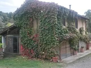 Molino le Gualchiere - Apt Capanna 2 bedrooms - Loro Ciuffenna vacation rentals