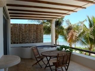 VRNM Condo Bunga Bunga 2 Bedrooms - Playa del Carmen vacation rentals