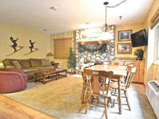 2BR Ski In/Ski Out Mountain Villa - Recently Remodeled Condo - Just Behind Boyneland Lift - East Jordan vacation rentals