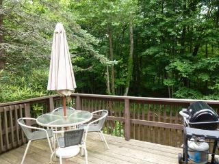 Mill Ridge River Front Chalet - Banner Elk vacation rentals