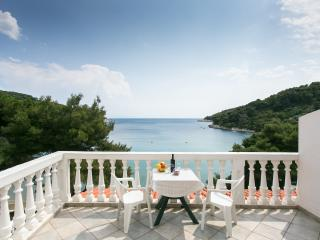 Apartments Franka Saplunara-One-Bedroom Apartment with Terrace and Sea View No 4 - Saplunara vacation rentals