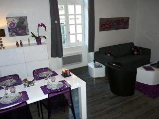 1 bedroom Apartment with Internet Access in Rennes - Rennes vacation rentals