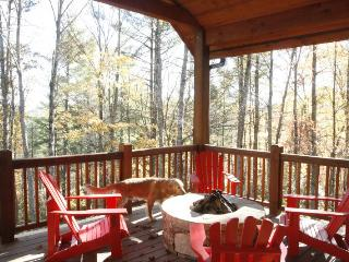 Bearfoot Cottage- Exceptional vacation home in Highlands, NC sleeps 6, 2 decks and firepit - North Carolina Piedmont vacation rentals