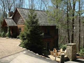 Lake Osseroga- Cozy luxury rental with large screened in porch and outdoor seating area with fireplace - North Carolina Piedmont vacation rentals