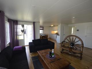 Northern light, winter, snow, silence,wild nature - Finnmark vacation rentals