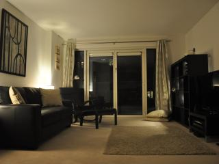 Beautiful 1-bed apartment next to Wembley stadium - Wembley vacation rentals