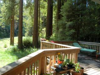 Deer Creek Cottage in the Redwoods - Cazadero vacation rentals