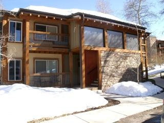 Beautiful Newly Upgraded Ski in/ski out condo - Snowmass Village vacation rentals