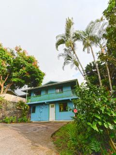 Paikapahu House overlooking Kealakekua Bay - Captain Cook vacation rentals