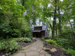 Rivertime-Located Right on the Ivy River- Skip Stones, Fish, Explore Creek & 15 Acres Of Woods - Smoky Mountains vacation rentals
