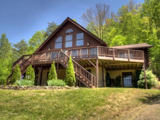 Eagles Perch- Modern & Spacious Log Home. Total Seclusion On 15 Mountain Acres; Incredible Views! - Canton vacation rentals