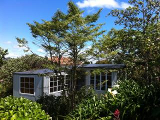 Mount Hobson Cabin in Remuera - Auckland vacation rentals