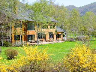 Perfect Villa with Deck and Internet Access - Abuta-gun vacation rentals