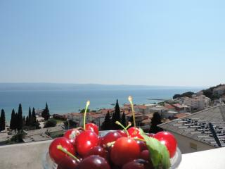 Sea view apartments Rubic Ap4 - Duce vacation rentals