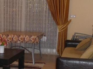 Lux Apartment Kusadasi - Black Sea vacation rentals