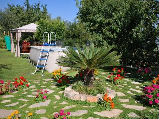 Villa Natura, Amazing garden and sea view - Vico Equense vacation rentals
