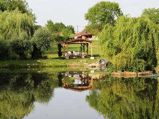 Montagny-pres-Louhans, Les Chênes Cornus, Burgundy - Gigny-sur-Saone vacation rentals
